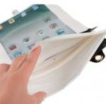Origin iPad mini
